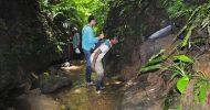 এবার জুড়ীতে হচ্ছে দেশের তৃতীয় 'বঙ্গবন্ধু শেখ মুজিব সাফারি পার্ক'